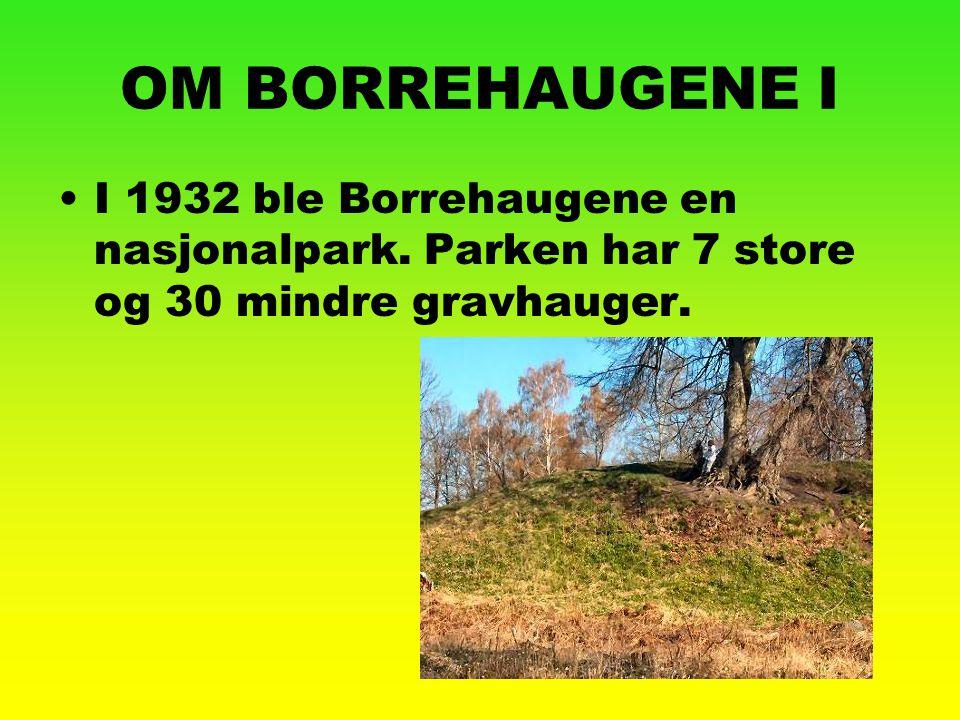 OM BORREHAUGENE I I 1932 ble Borrehaugene en nasjonalpark. Parken har 7 store og 30 mindre gravhauger.