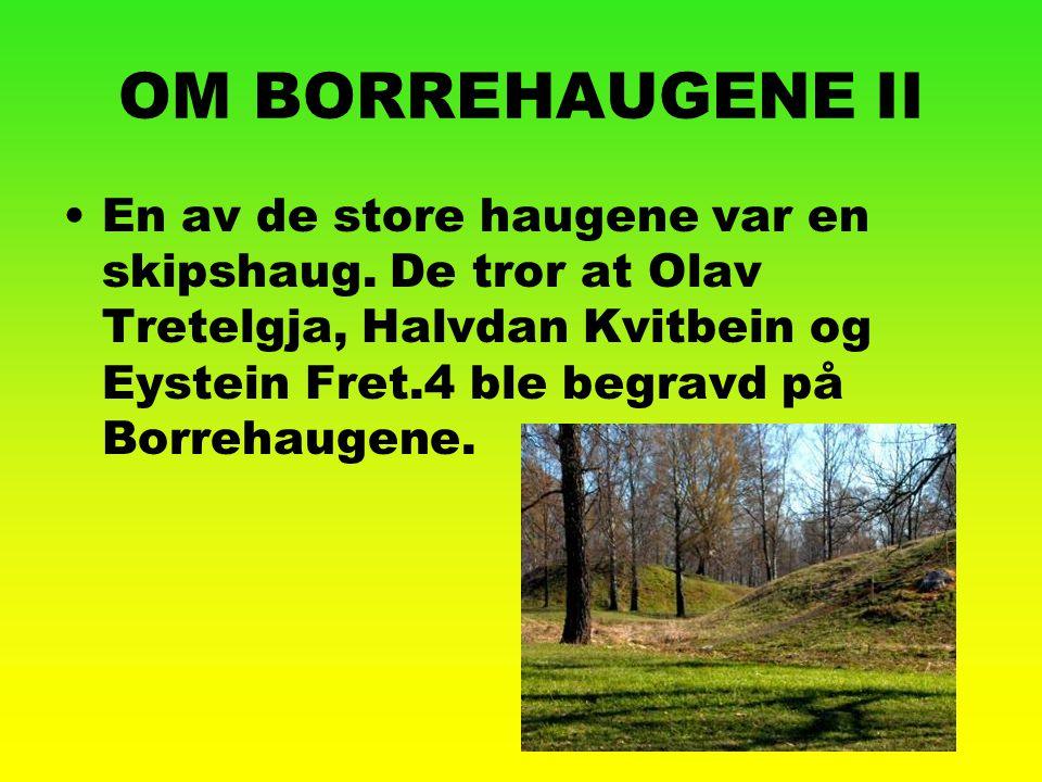OM BORREHAUGENE II En av de store haugene var en skipshaug. De tror at Olav Tretelgja, Halvdan Kvitbein og Eystein Fret.4 ble begravd på Borrehaugene.