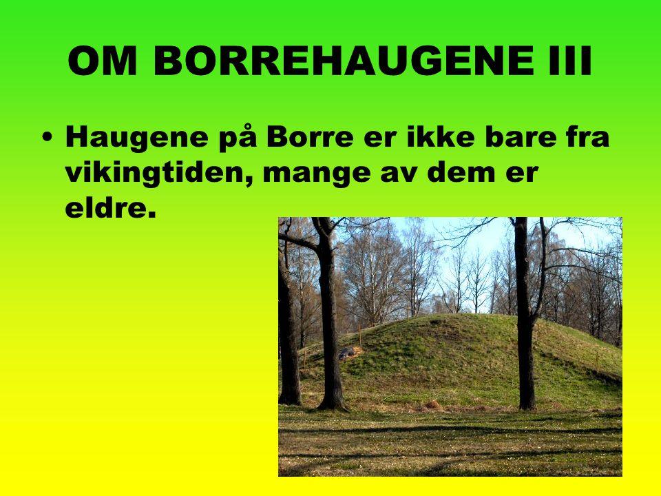 OM BORREHAUGENE III Haugene på Borre er ikke bare fra vikingtiden, mange av dem er eldre.