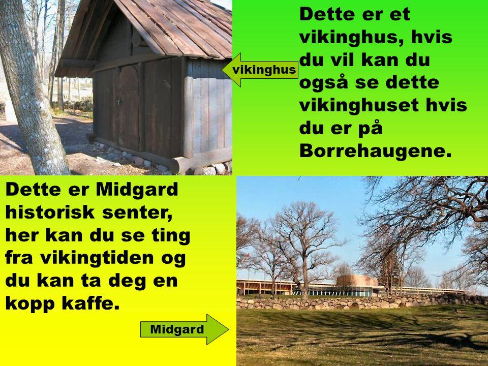 Dette er et vikinghus, hvis du vil kan du også se dette vikinghuset hvis du er på Borrehaugene. Dette er Midgard historisk senter, her kan du se ting