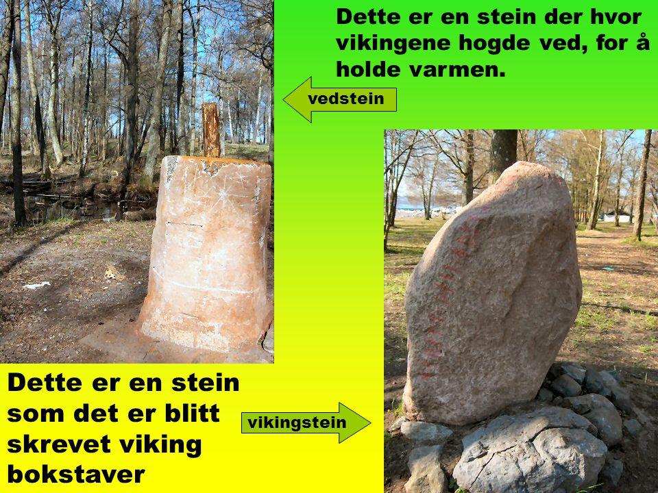 Dette er en stein som det er blitt skrevet viking bokstaver vikingstein Dette er en stein der hvor vikingene hogde ved, for å holde varmen. vedstein