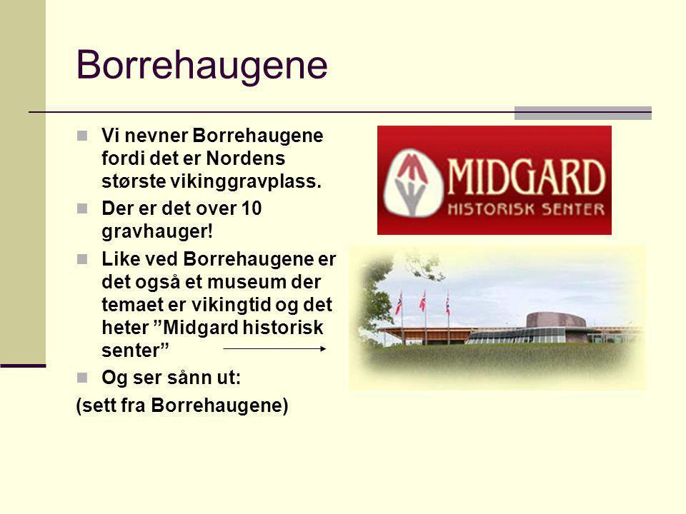 Borrehaugene Vi nevner Borrehaugene fordi det er Nordens største vikinggravplass. Der er det over 10 gravhauger! Like ved Borrehaugene er det også et