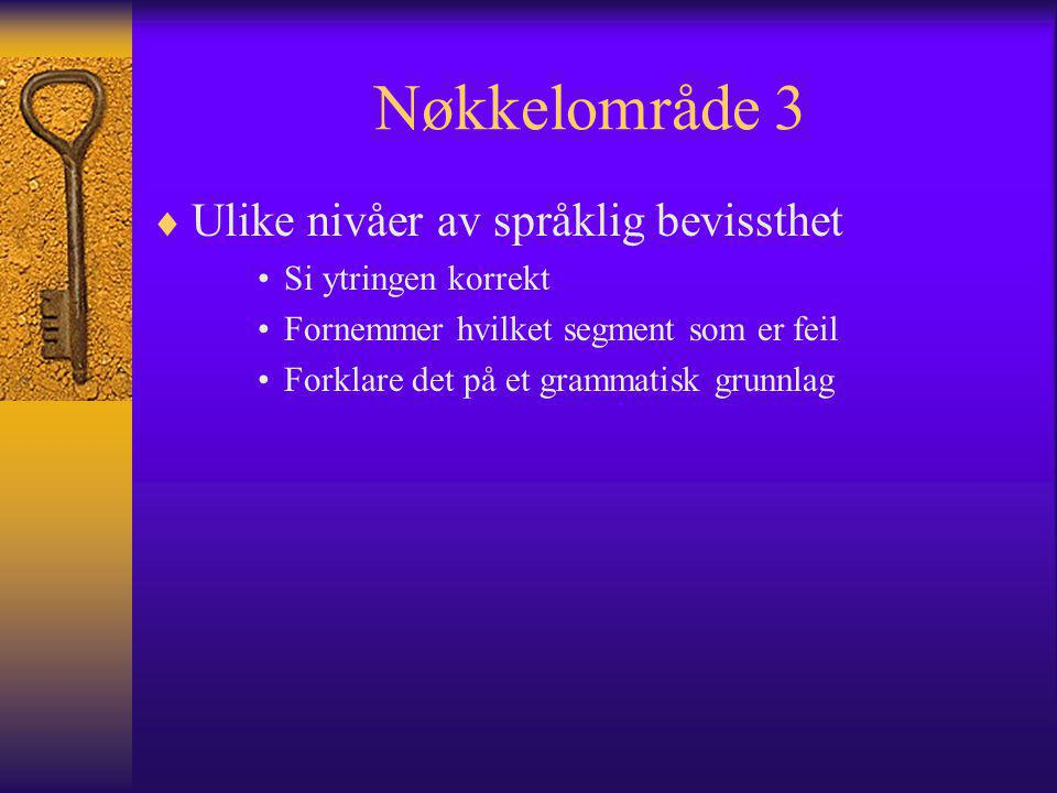 Nøkkelområde 3  Ulike nivåer av språklig bevissthet Si ytringen korrekt Fornemmer hvilket segment som er feil Forklare det på et grammatisk grunnlag