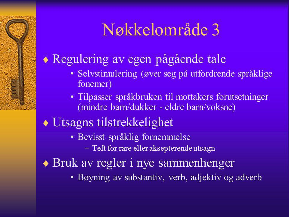 Nøkkelområde 3  Regulering av egen pågående tale Selvstimulering (øver seg på utfordrende språklige fonemer) Tilpasser språkbruken til mottakers forutsetninger (mindre barn/dukker - eldre barn/voksne)  Utsagns tilstrekkelighet Bevisst språklig fornemmelse –Teft for rare eller aksepterende utsagn  Bruk av regler i nye sammenhenger Bøyning av substantiv, verb, adjektiv og adverb