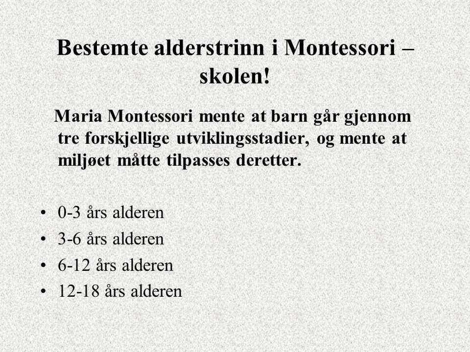 Bestemte alderstrinn i Montessori – skolen.