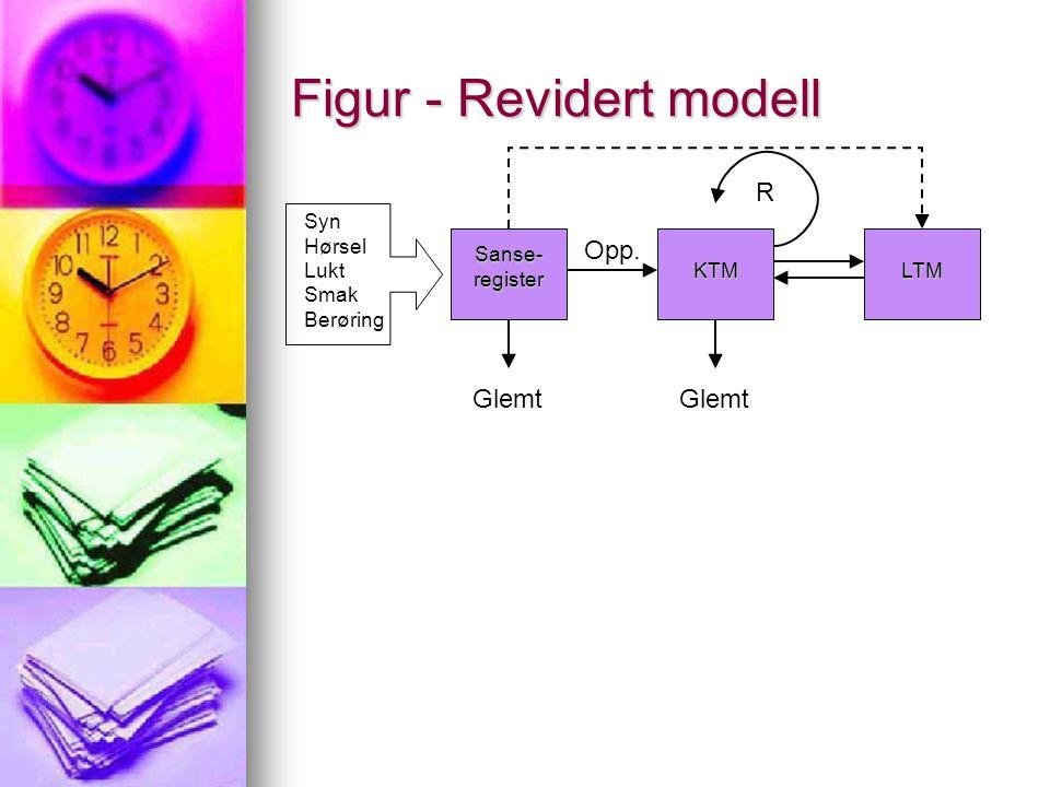 Figur - Revidert modell Sanse- register KTMLTM Syn Hørsel Lukt Smak Berøring Glemt Opp. R