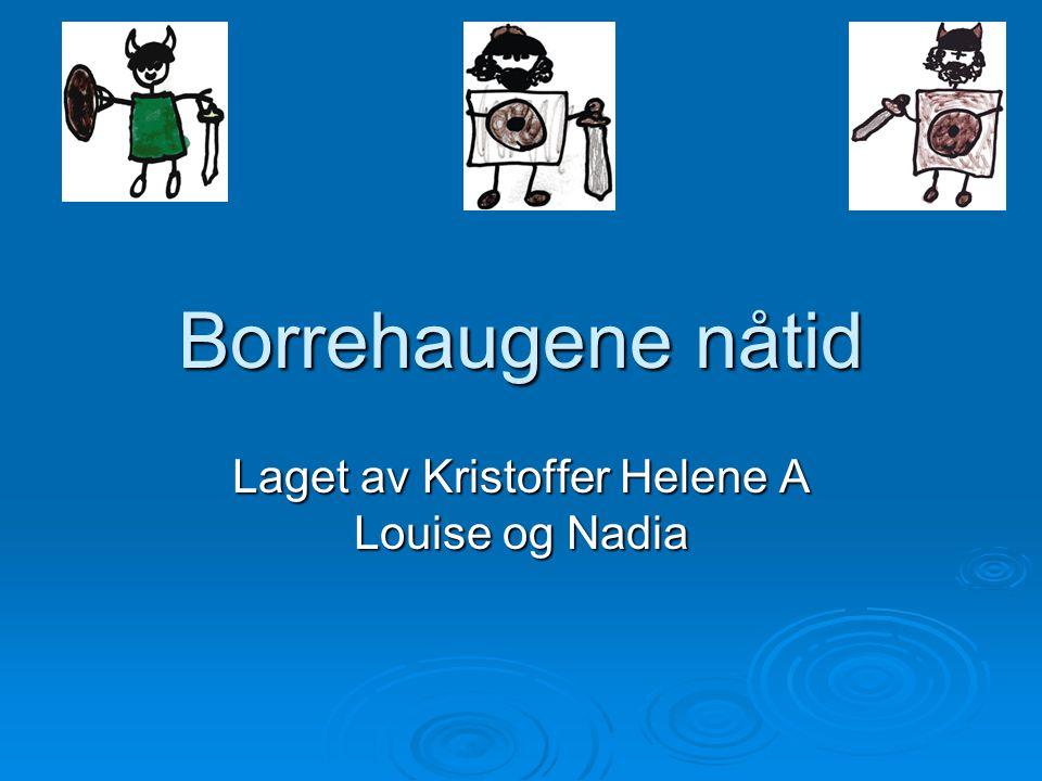 Borrehaugene nåtid Laget av Kristoffer Helene A Louise og Nadia