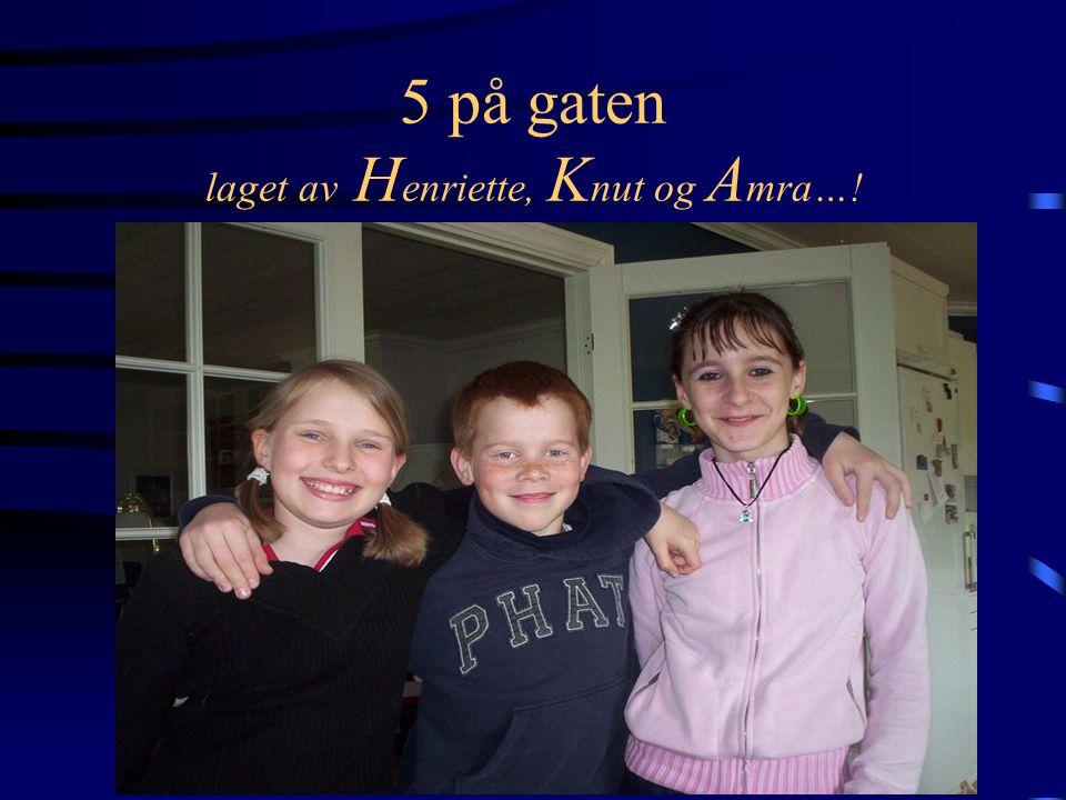 5 på gaten laget av H enriette, K nut og A mra…!