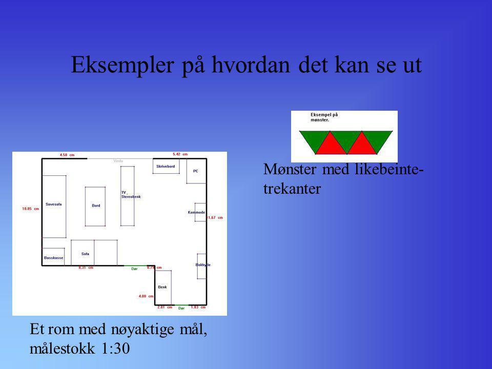 Eksempler på hvordan det kan se ut Et rom med nøyaktige mål, målestokk 1:30 Mønster med likebeinte- trekanter