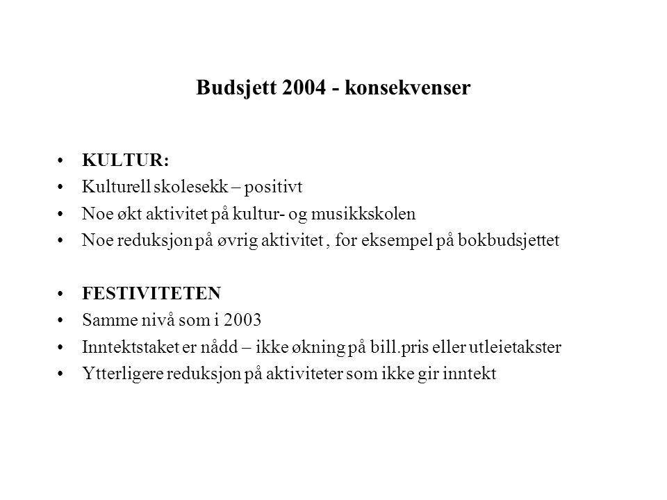 Budsjett 2004 - konsekvenser KULTUR: Kulturell skolesekk – positivt Noe økt aktivitet på kultur- og musikkskolen Noe reduksjon på øvrig aktivitet, for