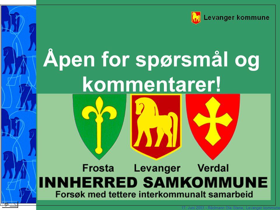 17. Juni 2003 - Rådmann Ola Stene, Levanger kommune Hvordan lykkes vi.