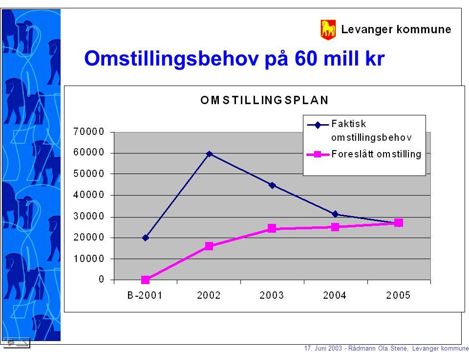 17. Juni 2003 - Rådmann Ola Stene, Levanger kommune Vi kjørte 16 delprosjekt våren 2001: