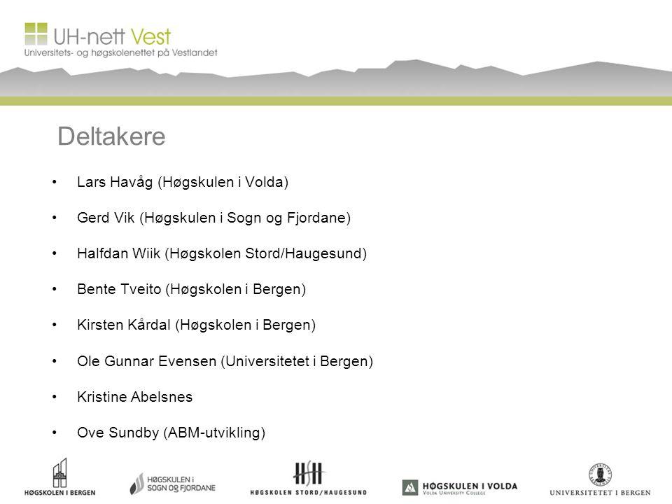 Deltakere Lars Havåg (Høgskulen i Volda) Gerd Vik (Høgskulen i Sogn og Fjordane) Halfdan Wiik (Høgskolen Stord/Haugesund) Bente Tveito (Høgskolen i Be
