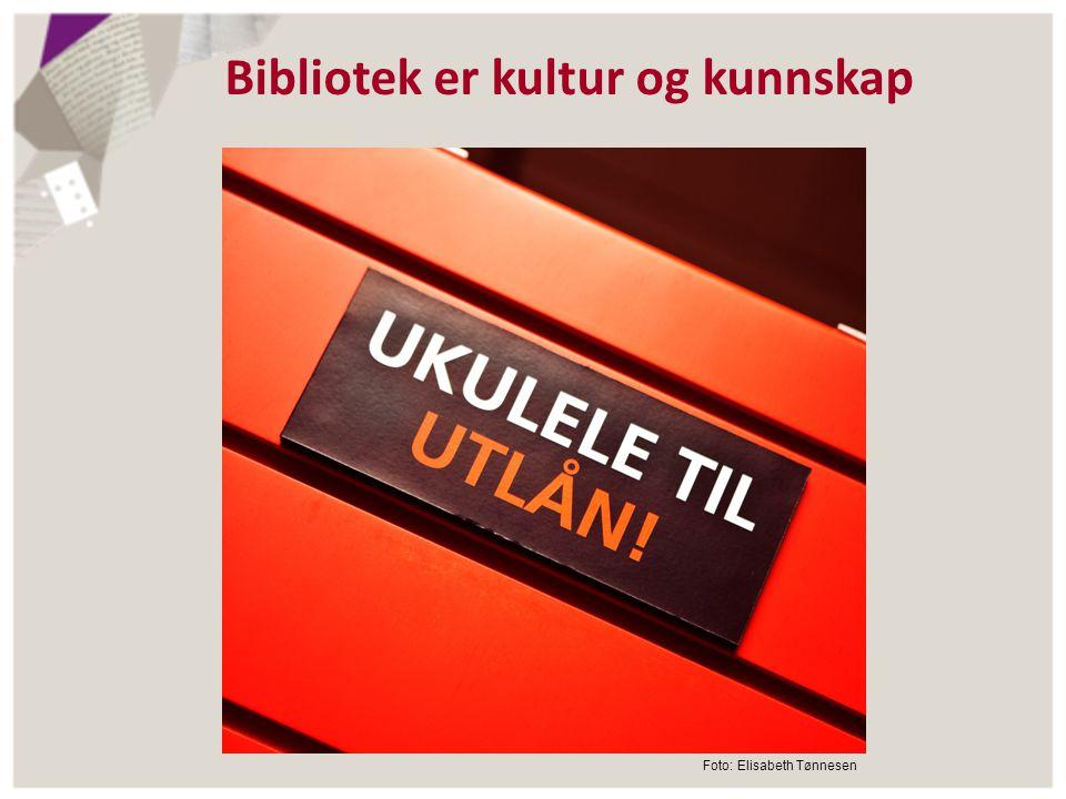 Bibliotek er kultur og kunnskap Foto: Elisabeth Tønnesen
