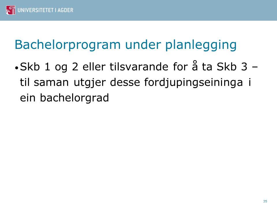 Bachelorprogram under planlegging Skb 1 og 2 eller tilsvarande for å ta Skb 3 – til saman utgjer desse fordjupingseininga i ein bachelorgrad 35