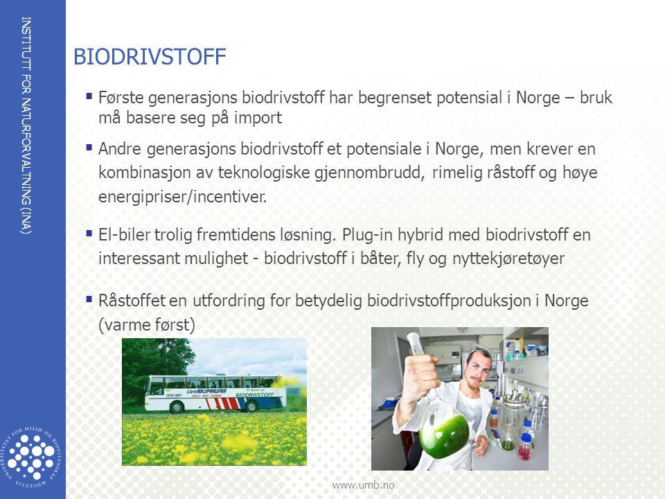 INSTITUTT FOR NATURFORVALTNING (INA) www.umb.no BIODRIVSTOFF  Første generasjons biodrivstoff har begrenset potensial i Norge – bruk må basere seg på