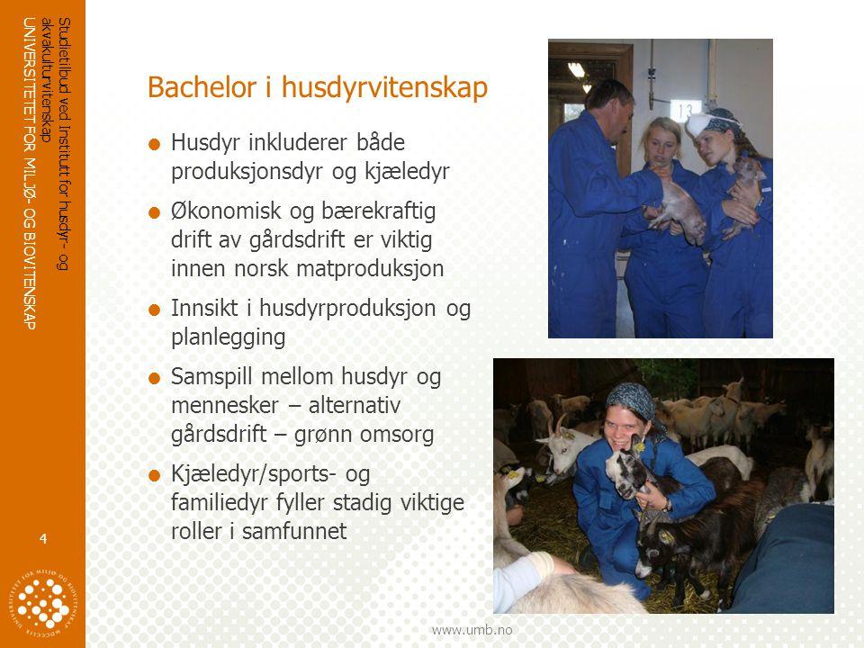 UNIVERSITETET FOR MILJØ- OG BIOVITENSKAP www.umb.no Studieplan bachelor i husdyrvitenskap  En Bachelor grad består av 180 stp.