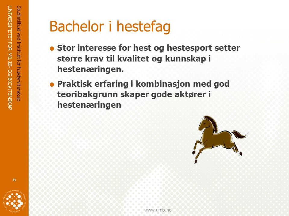 UNIVERSITETET FOR MILJØ- OG BIOVITENSKAP www.umb.no Bachelor i hestefag  Hva lærer du.