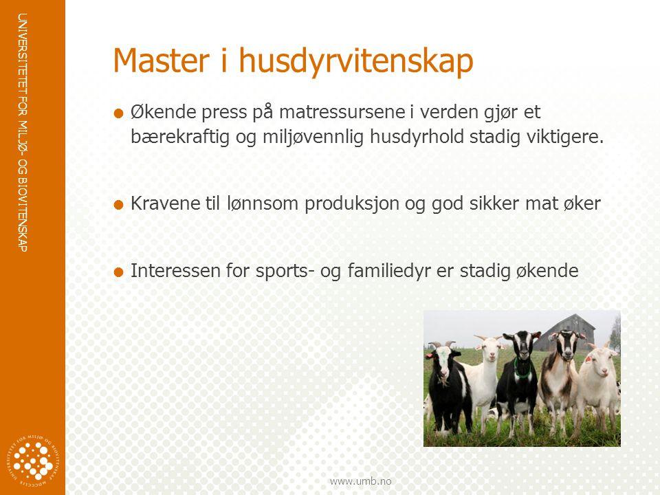 UNIVERSITETET FOR MILJØ- OG BIOVITENSKAP www.umb.no Master i husdyrvitenskap  Økende press på matressursene i verden gjør et bærekraftig og miljøvennlig husdyrhold stadig viktigere.