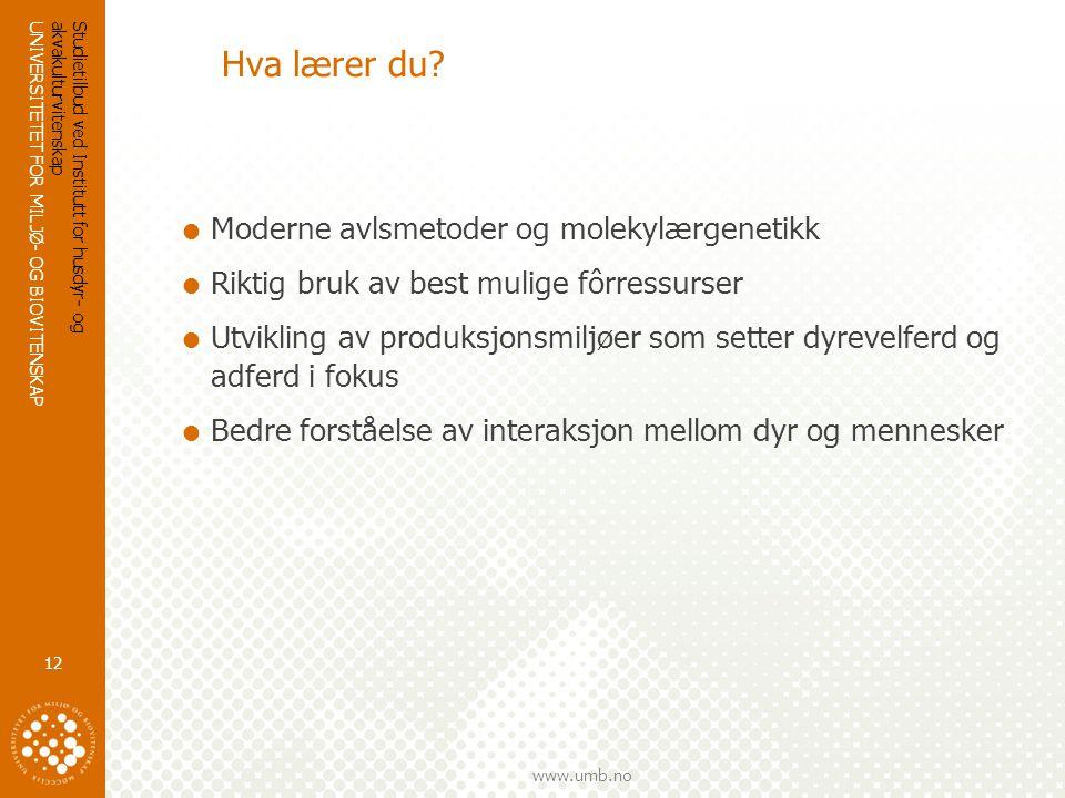 UNIVERSITETET FOR MILJØ- OG BIOVITENSKAP www.umb.no Hva lærer du.