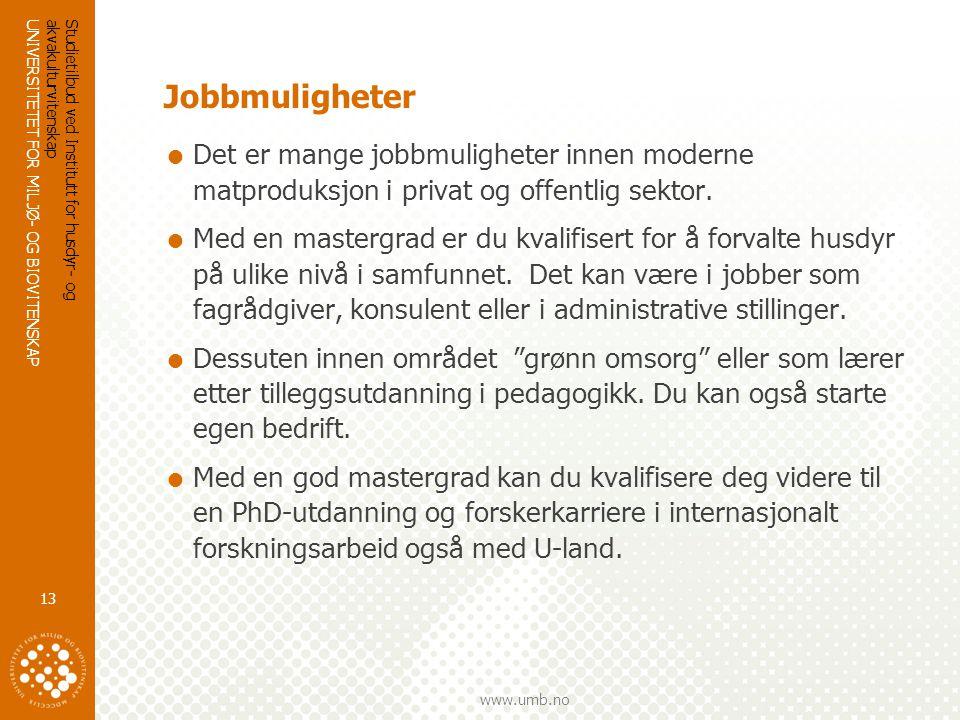 UNIVERSITETET FOR MILJØ- OG BIOVITENSKAP www.umb.no Jobbmuligheter  Det er mange jobbmuligheter innen moderne matproduksjon i privat og offentlig sektor.