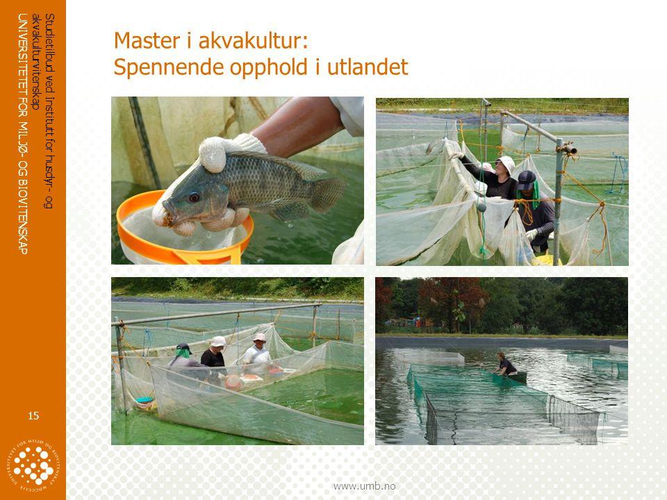 UNIVERSITETET FOR MILJØ- OG BIOVITENSKAP www.umb.no Studietilbud ved Institutt for husdyr- og akvakulturvitenskap 15 Master i akvakultur: Spennende opphold i utlandet