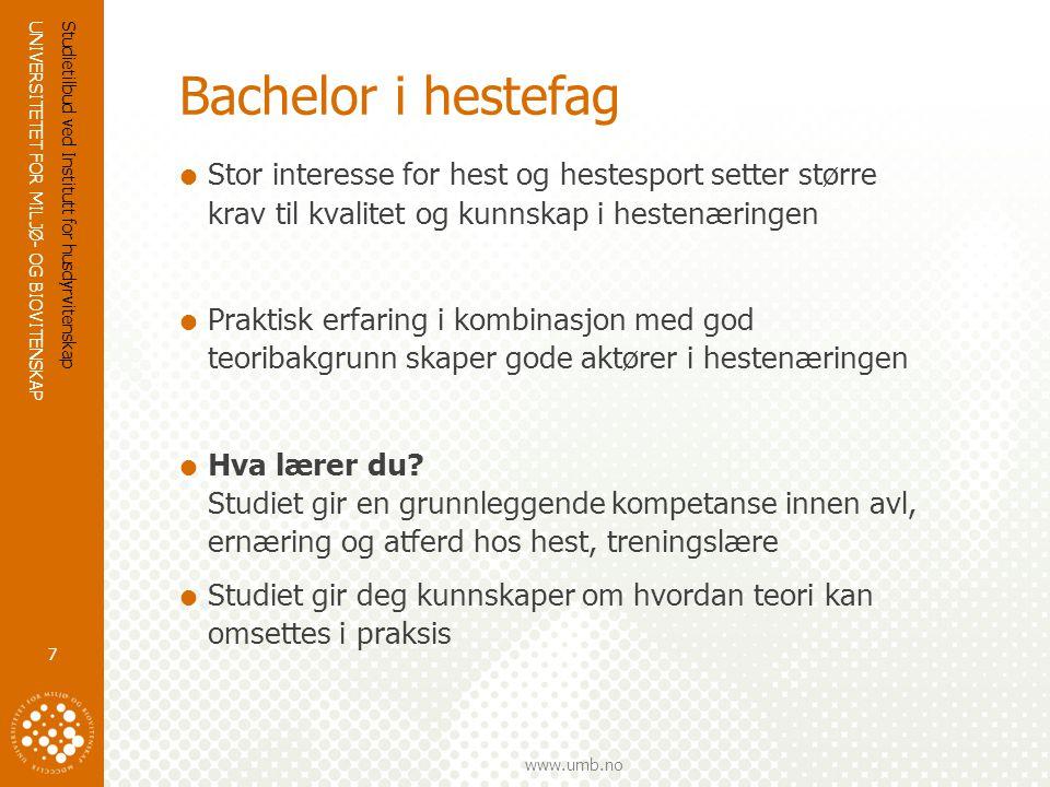 UNIVERSITETET FOR MILJØ- OG BIOVITENSKAP www.umb.no Bachelor i hestefag  Hva blir du.