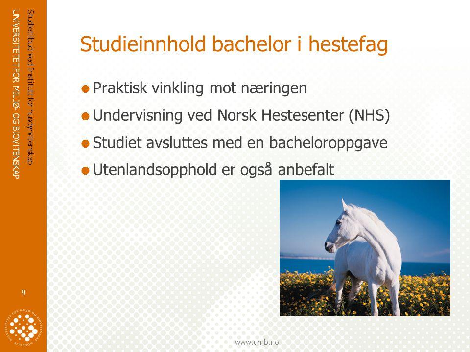 UNIVERSITETET FOR MILJØ- OG BIOVITENSKAP www.umb.no Studieinnhold bachelor i hestefag  Praktisk vinkling mot næringen  Undervisning ved Norsk Hestesenter (NHS)  Studiet avsluttes med en bacheloroppgave  Utenlandsopphold er også anbefalt Studietilbud ved Institutt for husdyrvitenskap 9