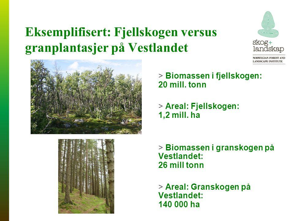 Eksemplifisert: Fjellskogen versus granplantasjer på Vestlandet > Biomassen i fjellskogen: 20 mill.