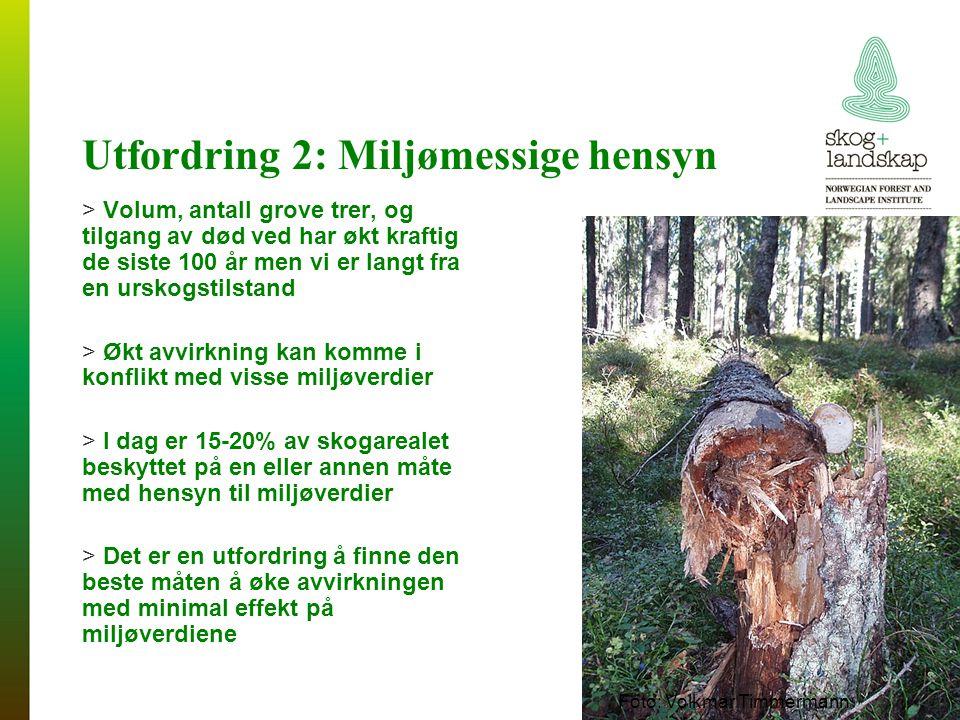 Utfordring 2: Miljømessige hensyn > Volum, antall grove trer, og tilgang av død ved har økt kraftig de siste 100 år men vi er langt fra en urskogstilstand > Økt avvirkning kan komme i konflikt med visse miljøverdier > I dag er 15-20% av skogarealet beskyttet på en eller annen måte med hensyn til miljøverdier > Det er en utfordring å finne den beste måten å øke avvirkningen med minimal effekt på miljøverdiene Foto: Volkmar Timmermann