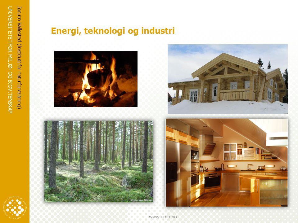 UNIVERSITETET FOR MILJØ- OG BIOVITENSKAP www.umb.no Energi, teknologi og industri Jorunn Vallestad (Institutt for naturforvaltning)