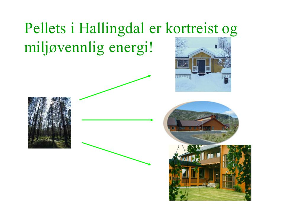 Pellets i Hallingdal er kortreist og miljøvennlig energi!