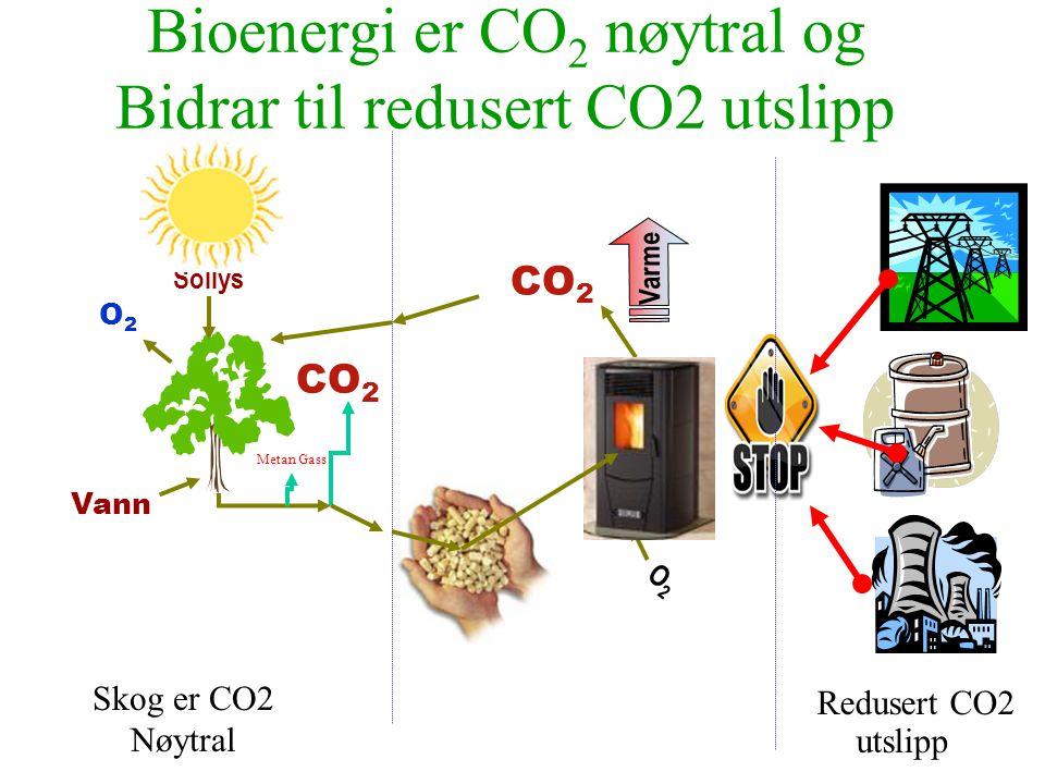 Bioenergi er CO 2 nøytral og Bidrar til redusert CO2 utslipp Redusert CO2 utslipp Vann CO 2 Sollys O2O2 O2O2 Varme CO 2 Metan Gass Skog er CO2 Nøytral