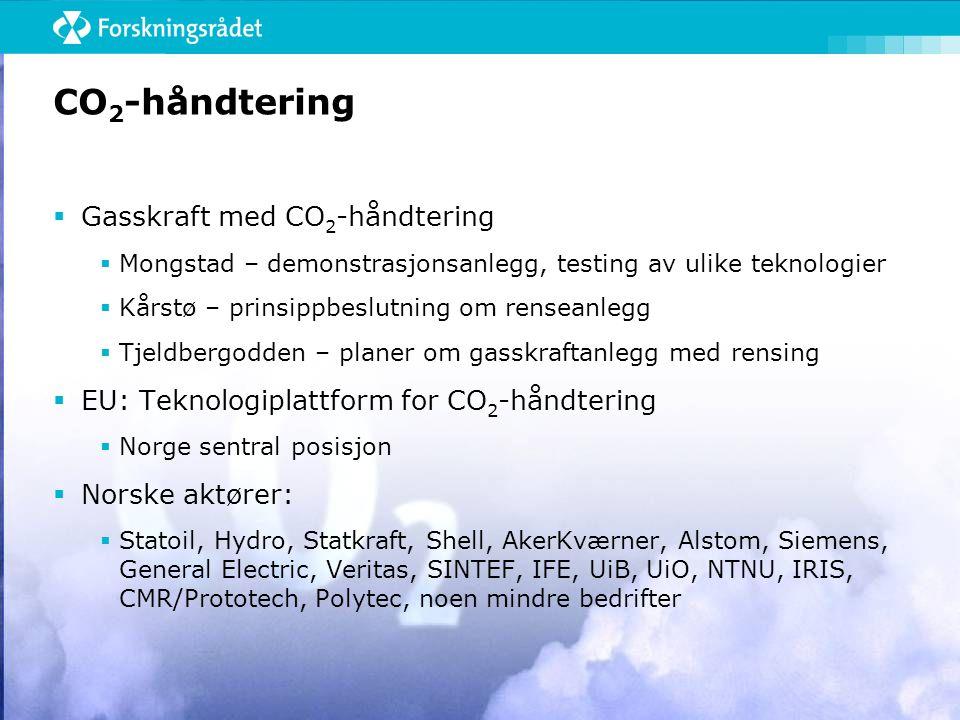 CO 2 -håndtering  Gasskraft med CO 2 -håndtering  Mongstad – demonstrasjonsanlegg, testing av ulike teknologier  Kårstø – prinsippbeslutning om renseanlegg  Tjeldbergodden – planer om gasskraftanlegg med rensing  EU: Teknologiplattform for CO 2 -håndtering  Norge sentral posisjon  Norske aktører:  Statoil, Hydro, Statkraft, Shell, AkerKværner, Alstom, Siemens, General Electric, Veritas, SINTEF, IFE, UiB, UiO, NTNU, IRIS, CMR/Prototech, Polytec, noen mindre bedrifter