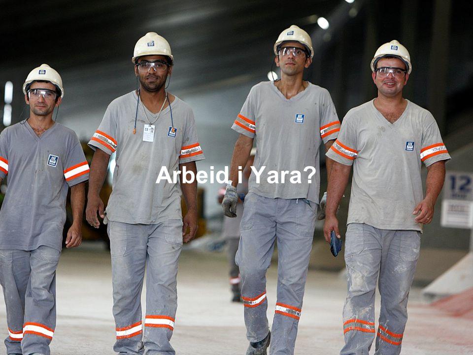 Arbeid i Yara?