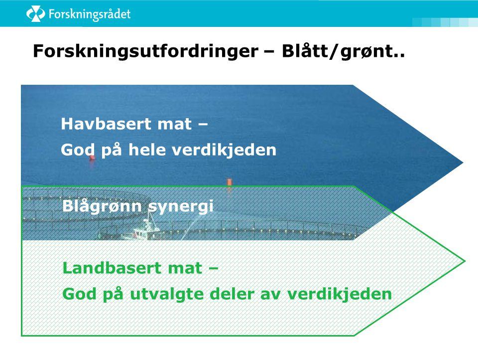 Forskningsutfordringer – Blått/grønt..