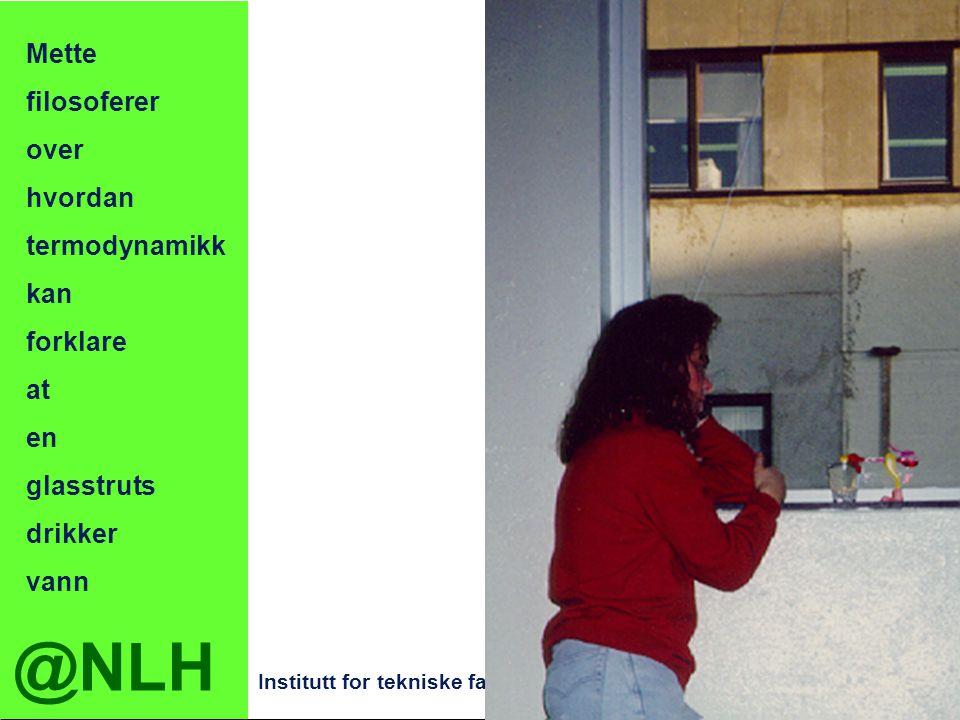 @NLH Institutt for tekniske fag Fasiliteter på fysikklab en PCer med tekstbehandling regneark/statistikkpakke ca 20 CDrom fysikkprogram ca 30 CDplater med klassisk Minibibliotek med lærebøker veilednings- og løsningshefter støttelitteratur ordbøker og oppslagsbøker 15-20 tidsskrifter Salong med sovesofa kaffetrakter og vannkoker kjøleskap fysikkleketøy Skrivebord med kontorutstyr Garderobe Labsykkel til bruk på campusen Utlånsordning for fysikkutstyr Tilgang hele døgnet for fysikk- studentene - egen nøkkel