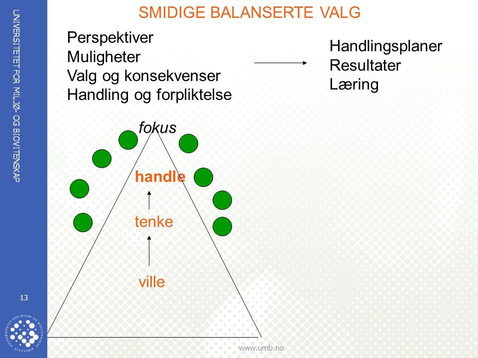 UNIVERSITETET FOR MILJØ- OG BIOVITENSKAP www.umb.no 13 handle tenke ville fokus Perspektiver Muligheter Valg og konsekvenser Handling og forpliktelse Handlingsplaner Resultater Læring SMIDIGE BALANSERTE VALG