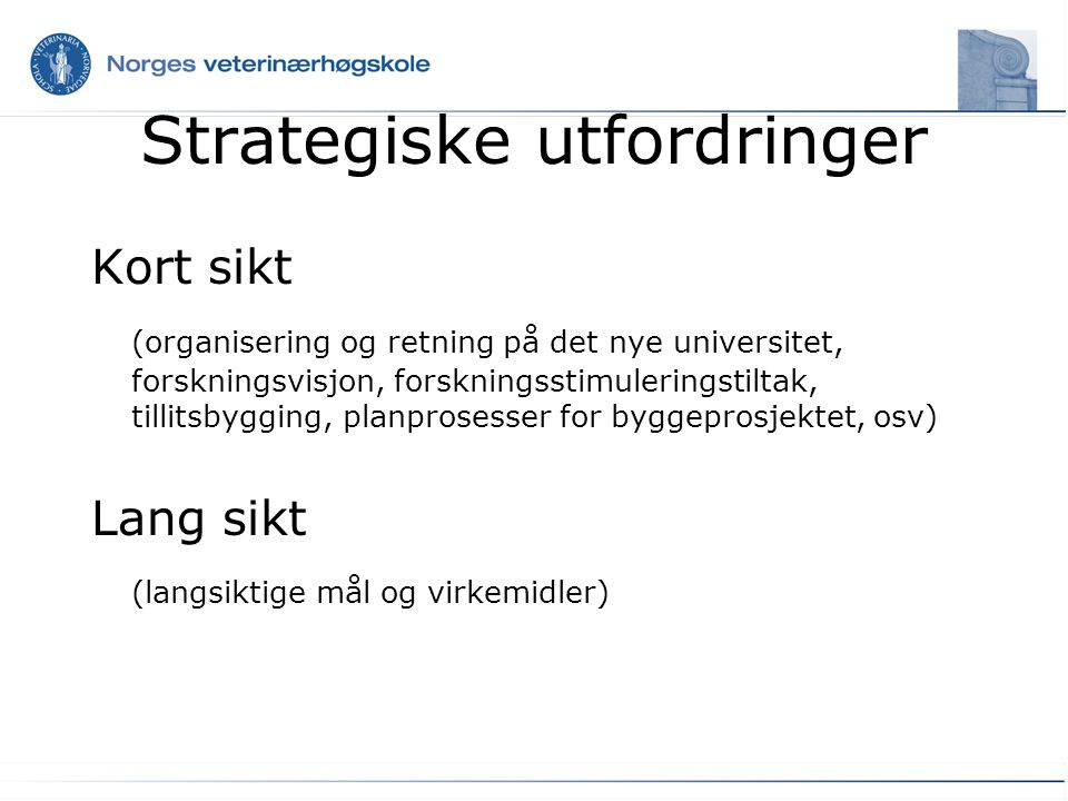 Strategiske utfordringer Kort sikt (organisering og retning på det nye universitet, forskningsvisjon, forskningsstimuleringstiltak, tillitsbygging, pl
