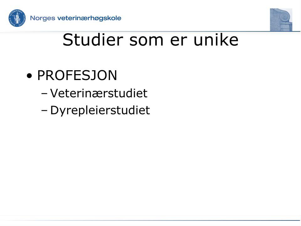 Andre studier Masterstudier –(akvamedisin og mattrygghet) Doktorgradsstudier