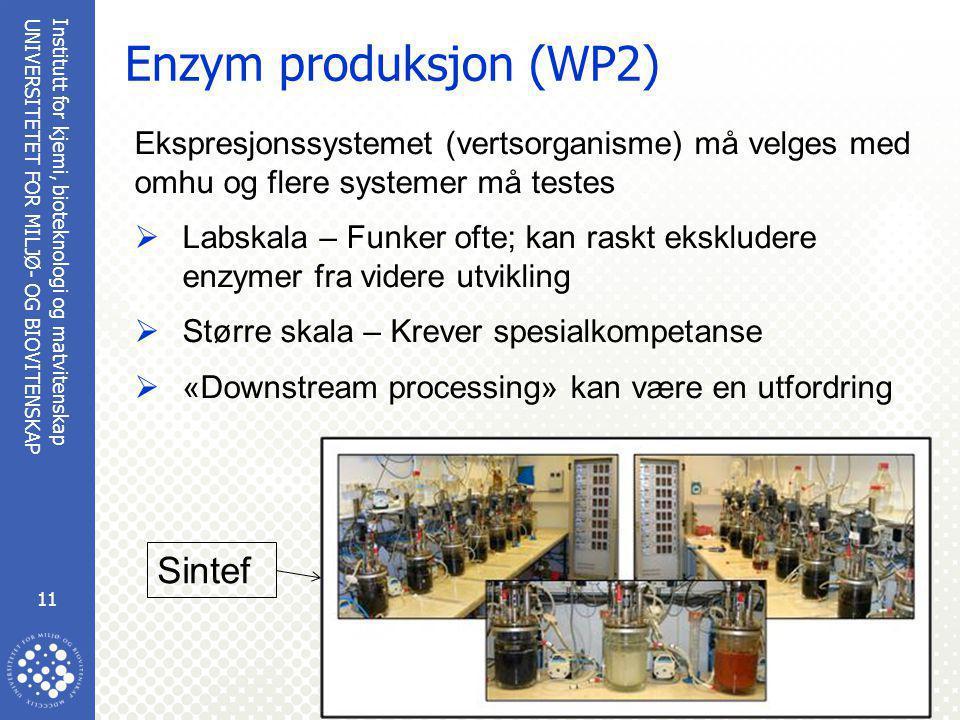 Institutt for kjemi, bioteknologi og matvitenskap 11 UNIVERSITETET FOR MILJØ- OG BIOVITENSKAP www.umb.no Enzym produksjon (WP2) Ekspresjonssystemet (vertsorganisme) må velges med omhu og flere systemer må testes  Labskala – Funker ofte; kan raskt ekskludere enzymer fra videre utvikling  Større skala – Krever spesialkompetanse  «Downstream processing» kan være en utfordring Sintef