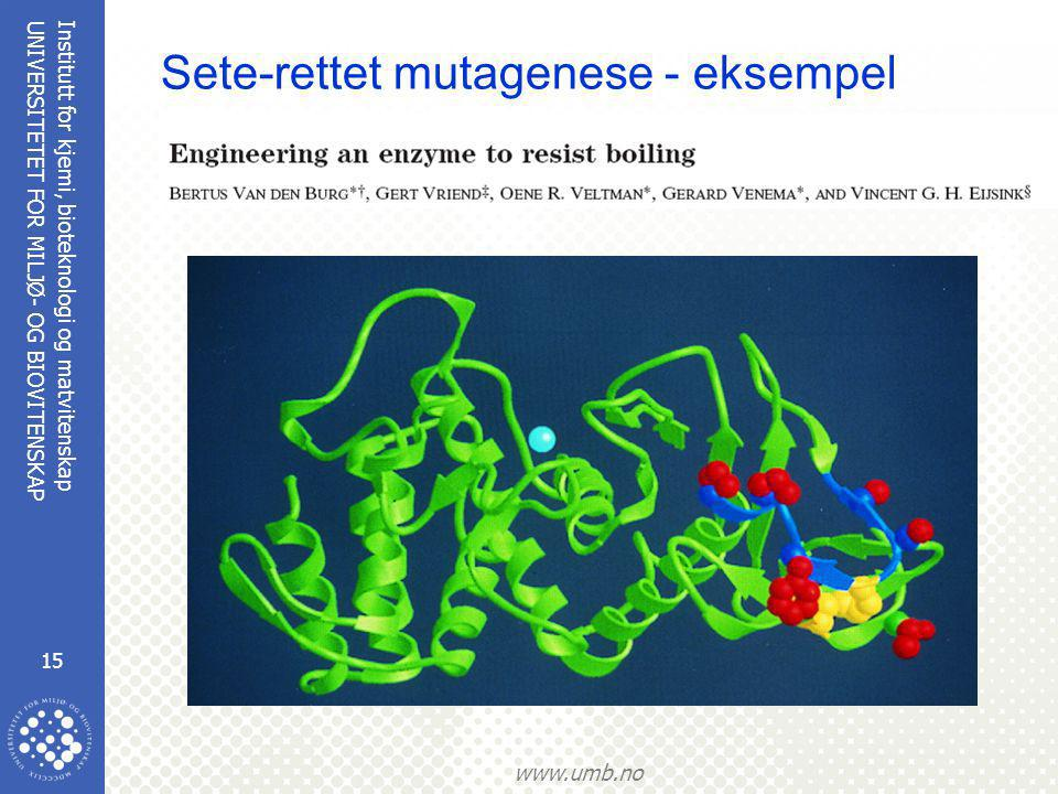 Institutt for kjemi, bioteknologi og matvitenskap 15 UNIVERSITETET FOR MILJØ- OG BIOVITENSKAP www.umb.no Sete-rettet mutagenese - eksempel