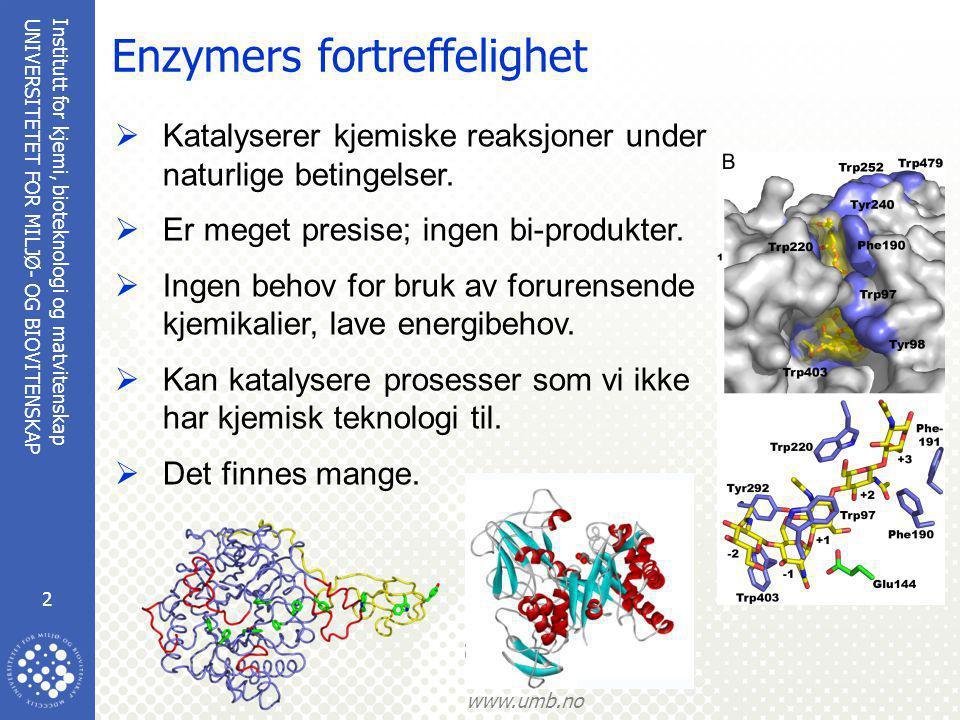 Institutt for kjemi, bioteknologi og matvitenskap 2 UNIVERSITETET FOR MILJØ- OG BIOVITENSKAP www.umb.no Enzymers fortreffelighet  Katalyserer kjemiske reaksjoner under naturlige betingelser.