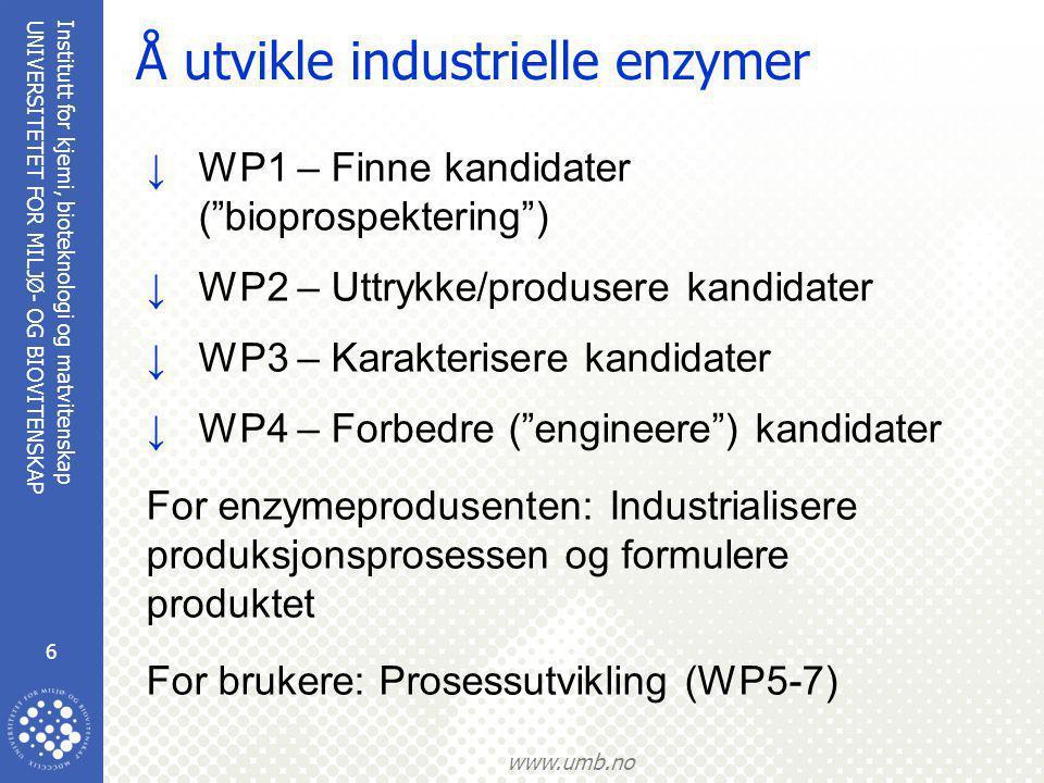 Institutt for kjemi, bioteknologi og matvitenskap 6 UNIVERSITETET FOR MILJØ- OG BIOVITENSKAP www.umb.no Å utvikle industrielle enzymer ↓WP1 – Finne ka