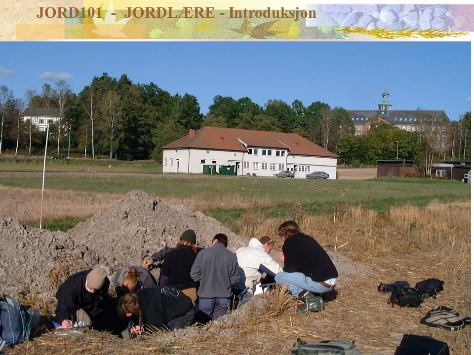 JORD101 - lærere Lars Egil Haugen Institutt for plante- og miljøvitenskap Kontor: J117 1 etg.