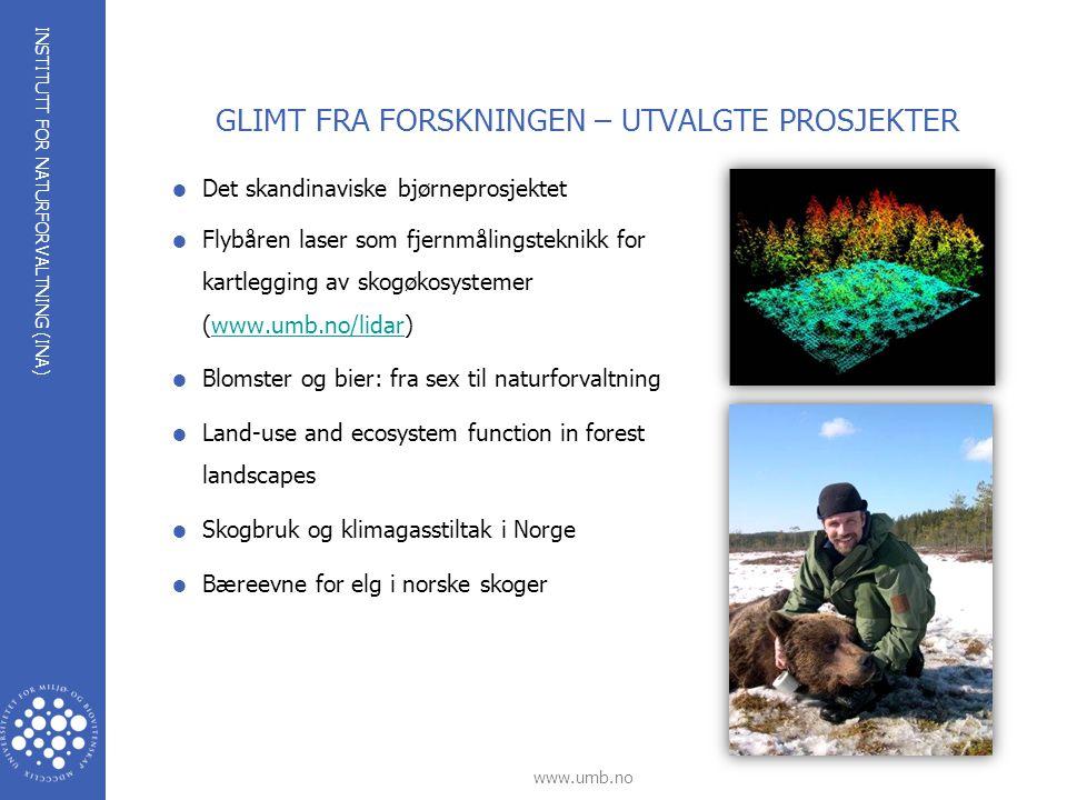INSTITUTT FOR NATURFORVALTNING (INA) www.umb.no GLIMT FRA FORSKNINGEN – UTVALGTE PROSJEKTER  Det skandinaviske bjørneprosjektet  Flybåren laser som fjernmålingsteknikk for kartlegging av skogøkosystemer (www.umb.no/lidar)www.umb.no/lidar  Blomster og bier: fra sex til naturforvaltning  Land-use and ecosystem function in forest landscapes  Skogbruk og klimagasstiltak i Norge  Bæreevne for elg i norske skoger