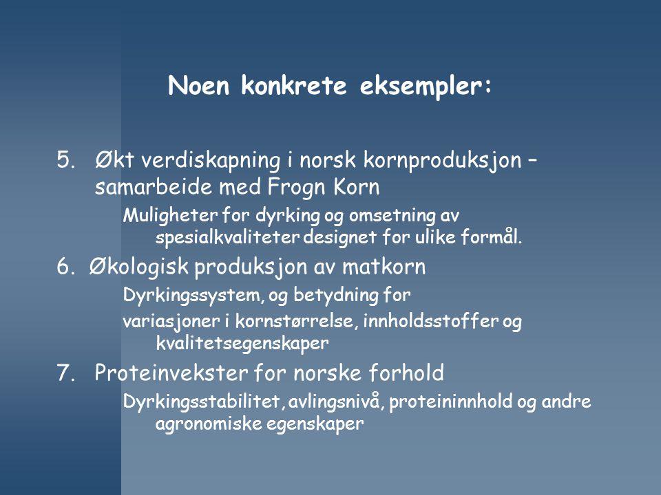 Noen konkrete eksempler: 5.Økt verdiskapning i norsk kornproduksjon – samarbeide med Frogn Korn Muligheter for dyrking og omsetning av spesialkvalitet