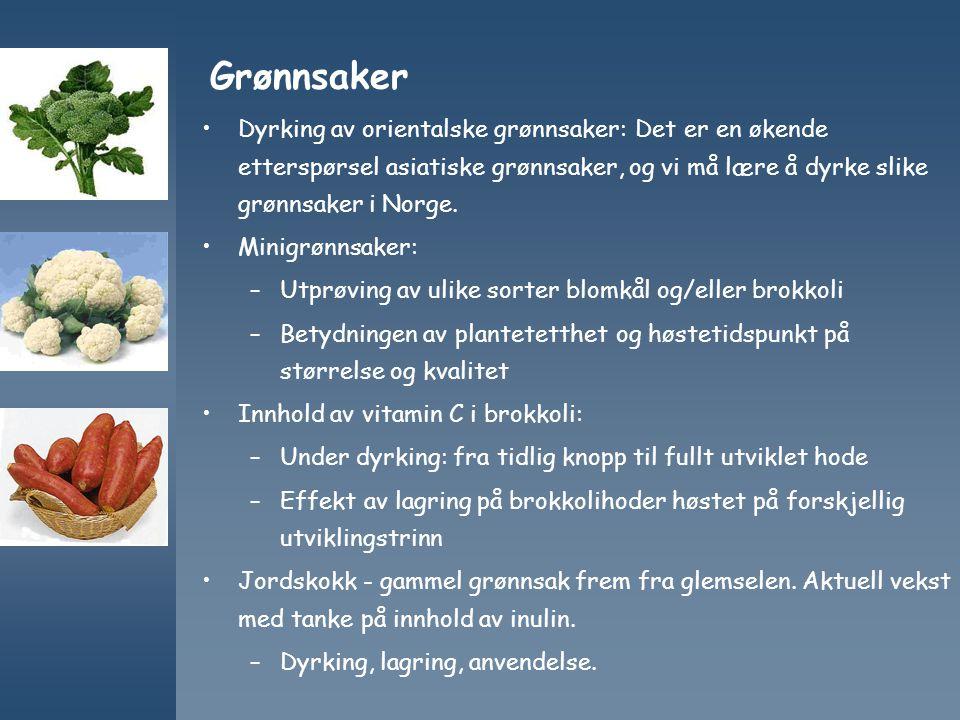 Grønnsaker Dyrking av orientalske grønnsaker: Det er en økende etterspørsel asiatiske grønnsaker, og vi må lære å dyrke slike grønnsaker i Norge. Mini