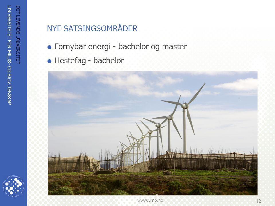 UNIVERSITETET FOR MILJØ- OG BIOVITENSKAP www.umb.no 12 DET LEVENDE UNIVERSITET NYE SATSINGSOMRÅDER  Fornybar energi - bachelor og master  Hestefag -