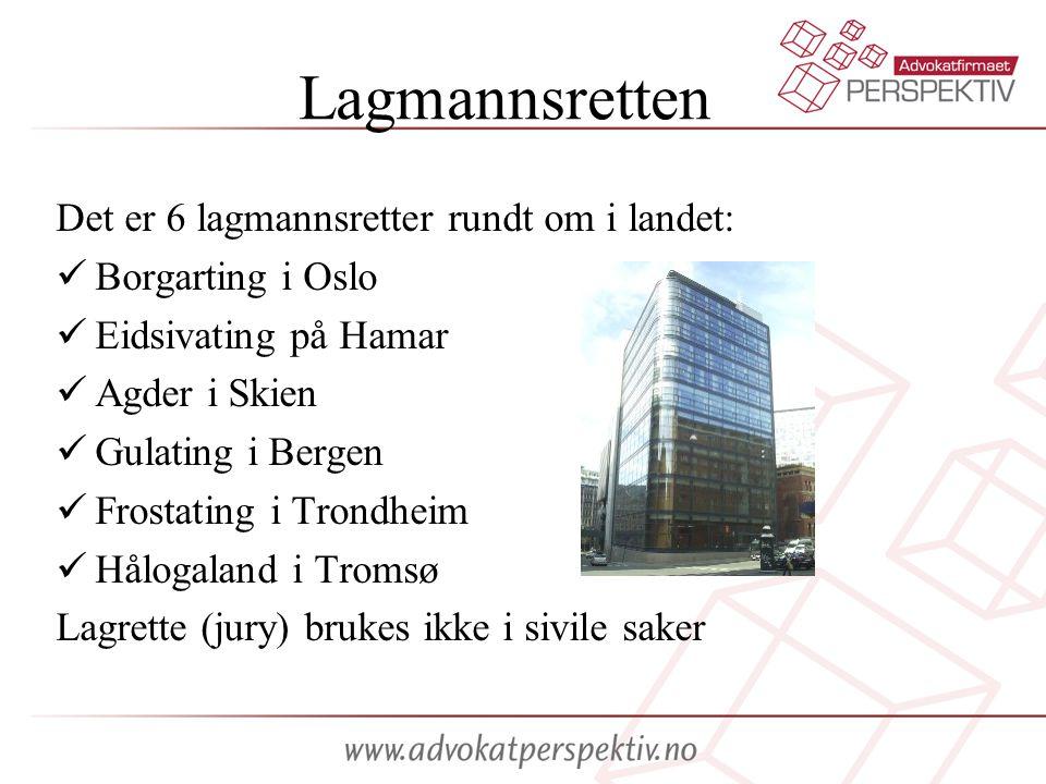 Lagmannsretten Det er 6 lagmannsretter rundt om i landet: Borgarting i Oslo Eidsivating på Hamar Agder i Skien Gulating i Bergen Frostating i Trondheim Hålogaland i Tromsø Lagrette (jury) brukes ikke i sivile saker